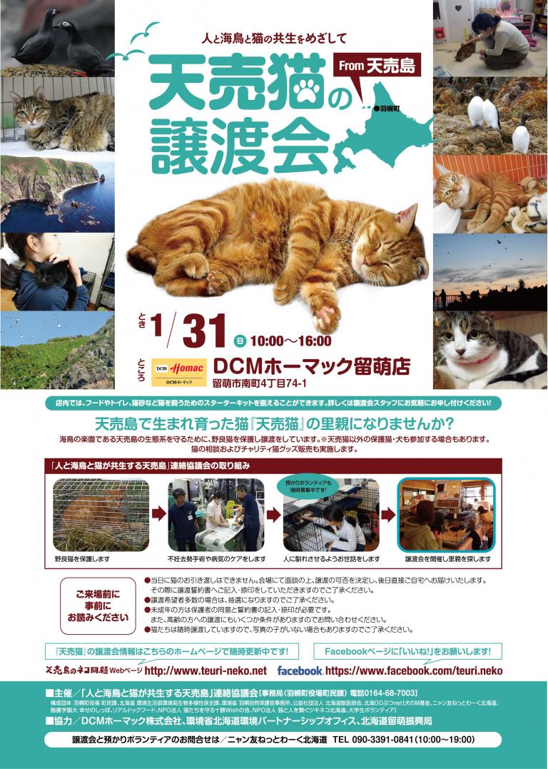 【2016/01/31】 天売猫の譲渡会(DCMホーマック留萌店)
