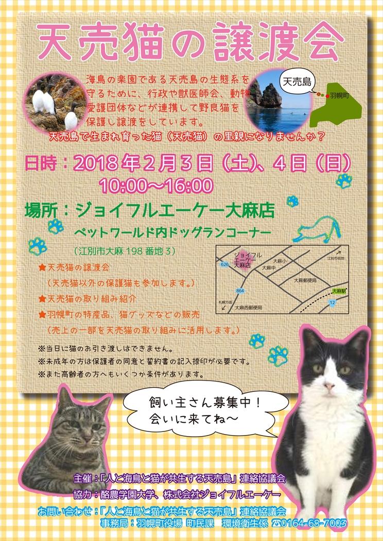 【02/03~02/04】天売猫の譲渡会