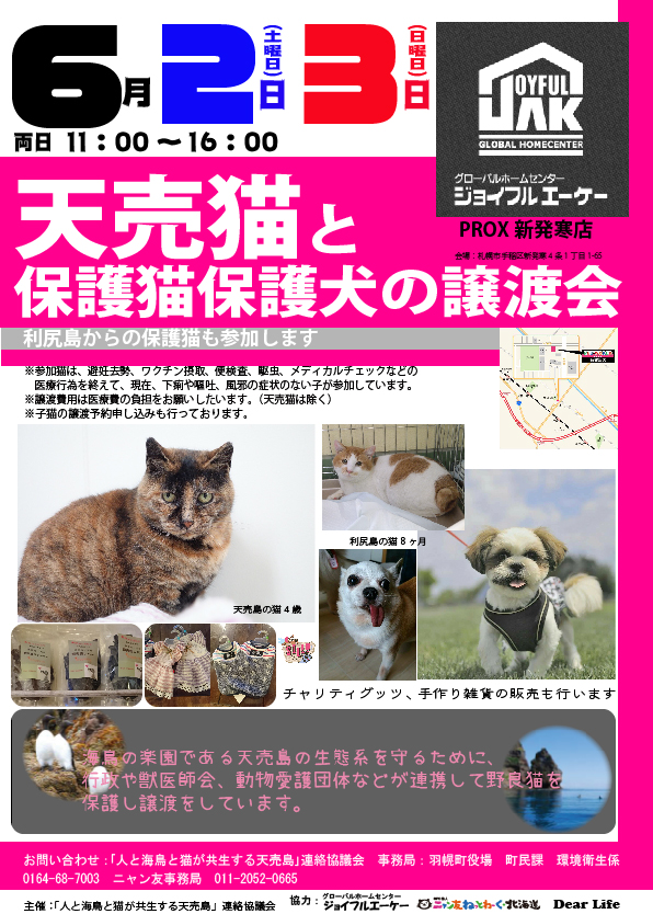 【06/02~06/03】天売猫と保護猫保護犬の譲渡会
