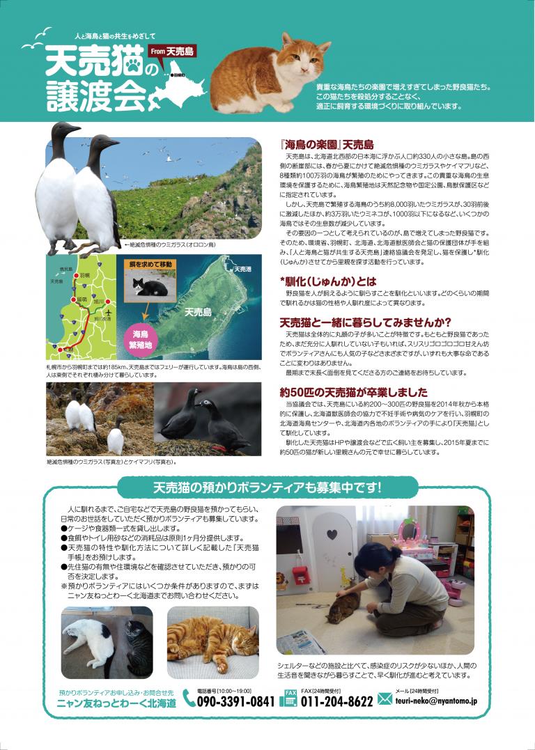 2016_0131天売猫譲渡会-02