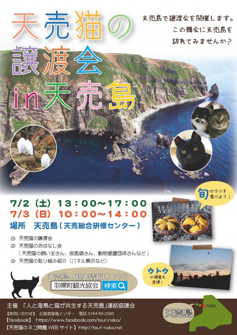 【2016/07/02-03】天売猫の 譲渡会 in天売島