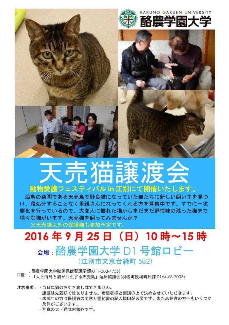 【2016/09/25】 天売猫譲渡会(動物愛護フェスティバルin江別)
